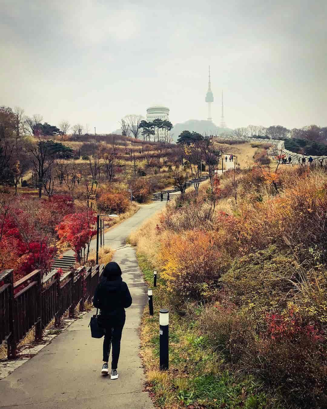 Tempat Wisata Gratis Korea Selatan