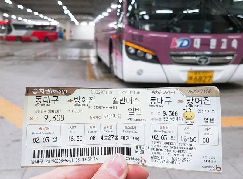 Tips dan Panduan Wisata Korea Selatan