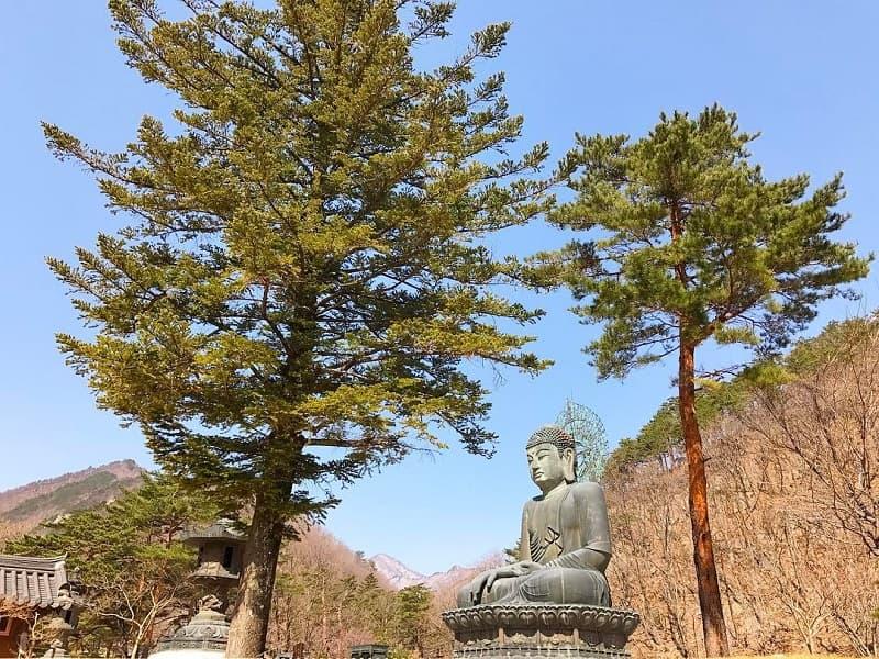 Itinerary Liburan Korea Gung Seorak - Shinheungsa Temple