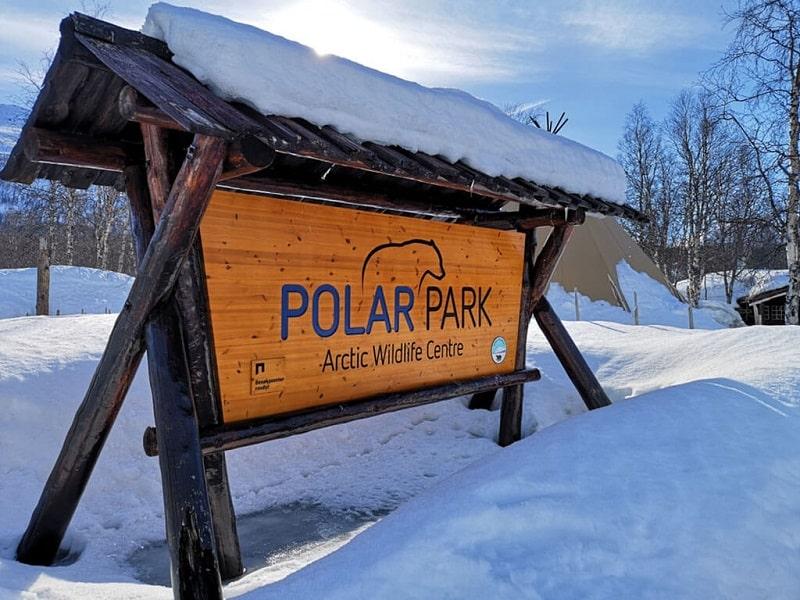 Rekomendasi Kegiatan yang Cuma Bisa Dilakukan Saat Winter di Eropa - Berinteraksi dengan Hewan Kutub di Polar Park