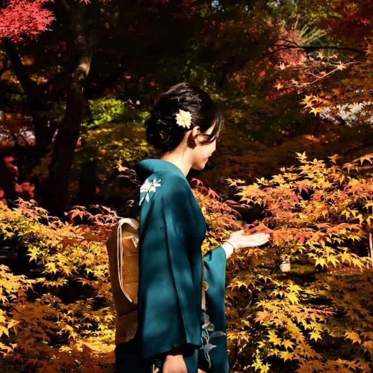 Waktu Terbaik Liburan ke Jepang Berdasarkan Musim - Sumber Unsplash