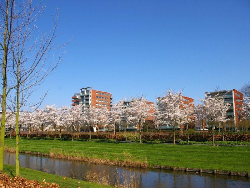 Amstelveen, Belanda - Sumber: Wikimedia