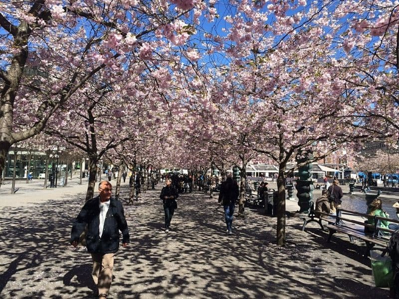 Stockholm, Swedia - Sumber Needpix