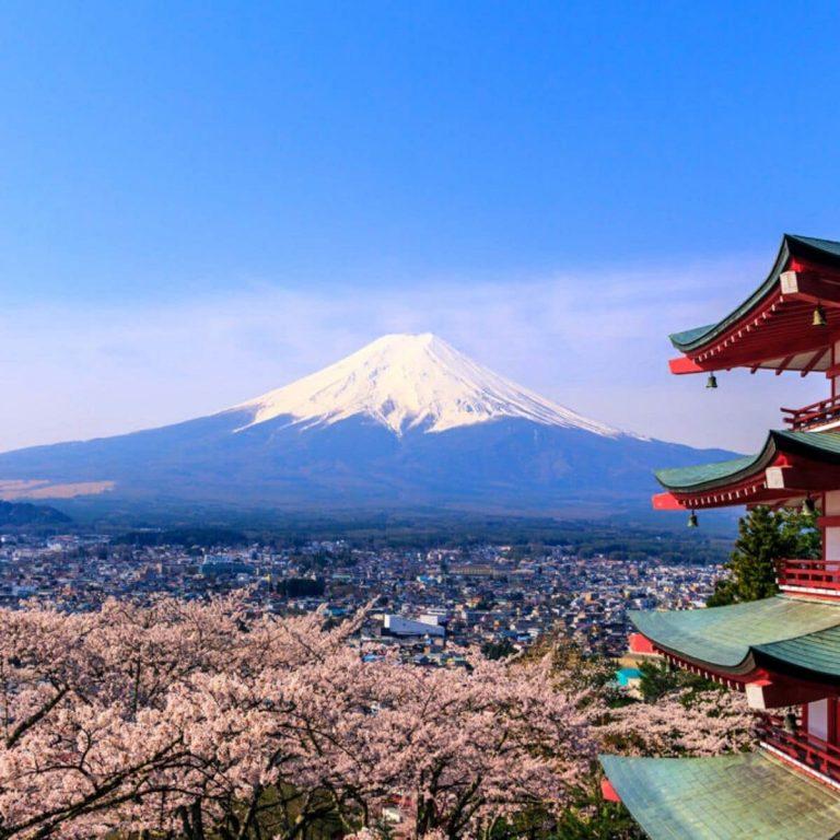 Paket Tour Bunga Sakura 2020 di Jepang, Korea, dan China