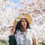 Prediksi Jadwal 7 Festival Sakura di Korea 2020 - Sumber Unsplash