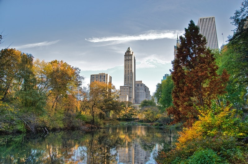 Central Park New York - Sumber Wikipedia