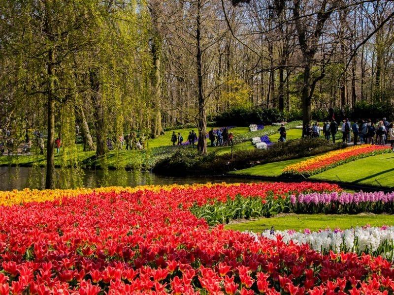 Kota Wisata Eropa Barat - Keukenhof, Lisse, Belanda - Sumber Flickr