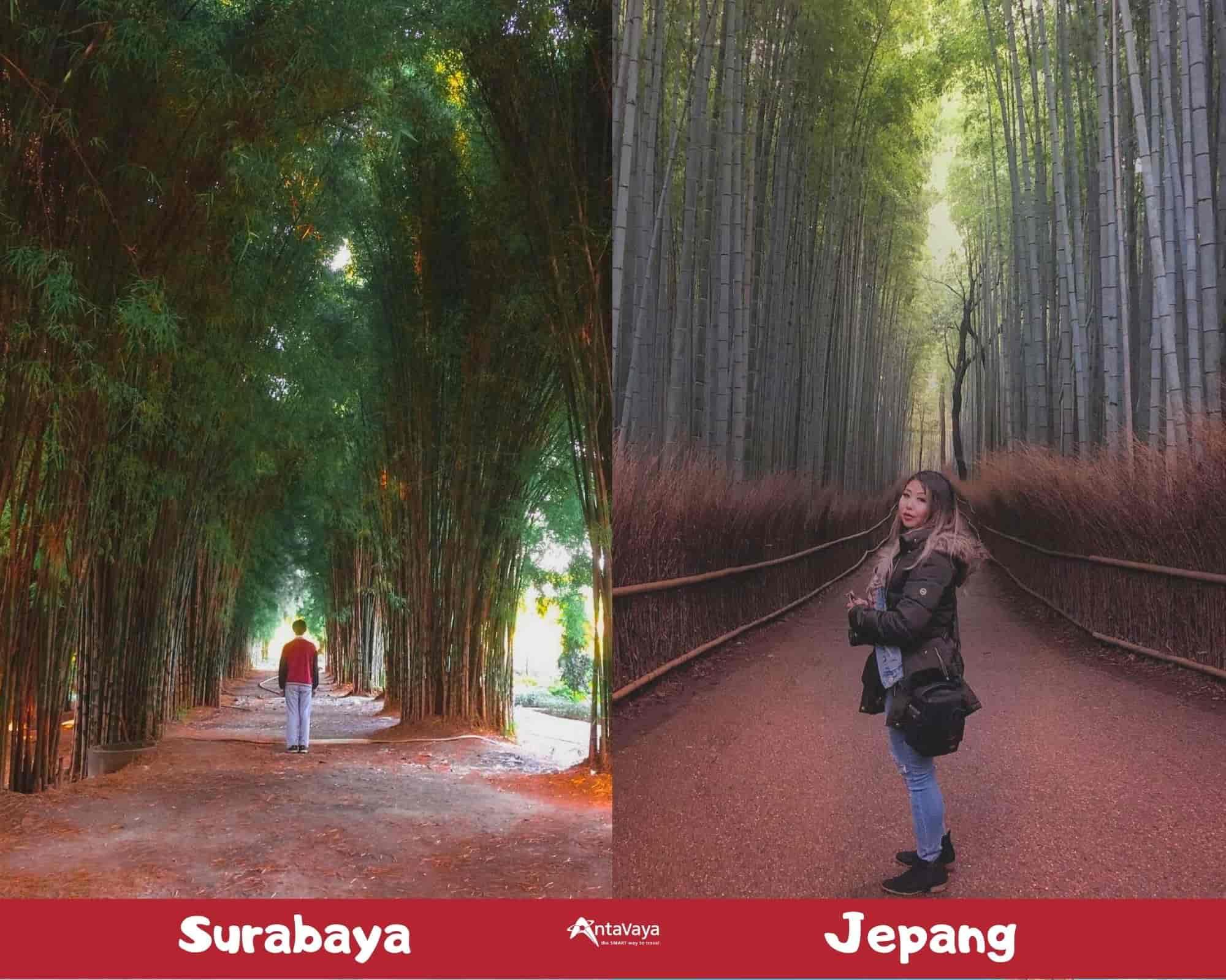 Spot Destinasi Indonesia Mirip Luar Negeri - Sumber Instagram calvin_jefferson dan savorwithmel