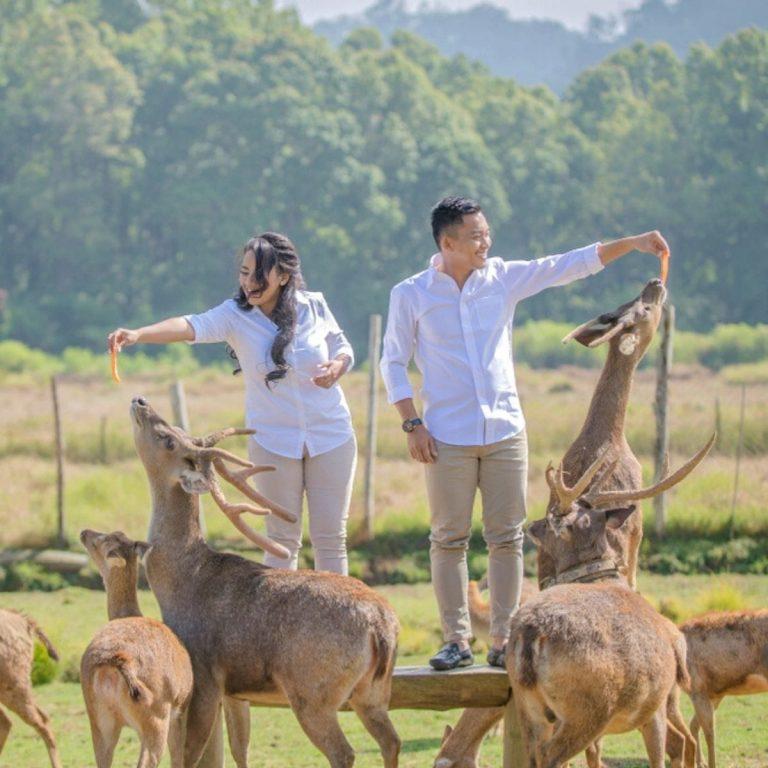 Wisata Alam 10 Hidden Gems Bandung yang Cocok untuk Liburan New Normal