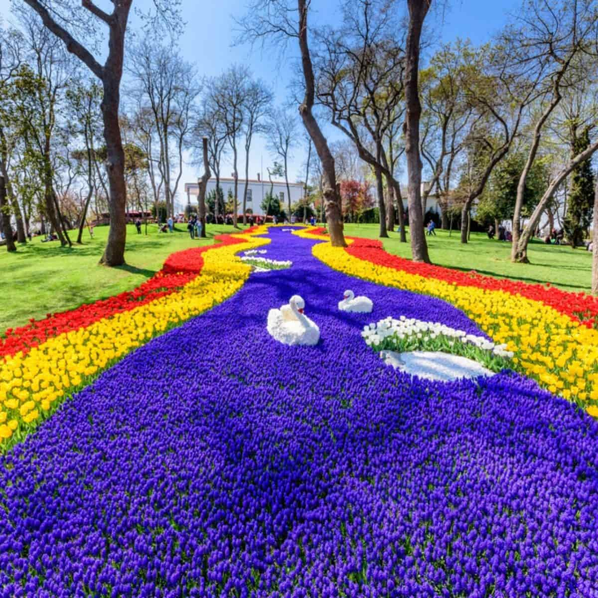 5 Tempat Terbaik Melihat Festival Taman Bunga Tulip di Turki - Emirgan Park